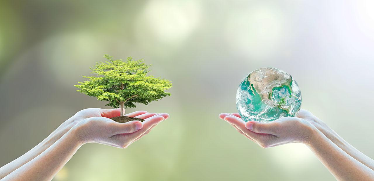 bio'bric lutte contre le réchauffement climatique