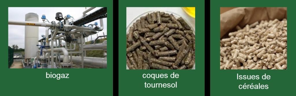 exemples utilisations biocombustibles Bouyer Leroux